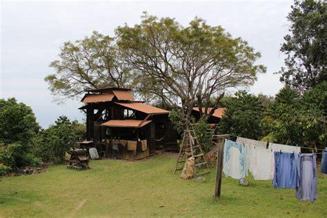 The farm has a large area with many varieties of coffee. Kona Coffee Living History Farm — Kona Historical Society   Kona coffee, Living history ...