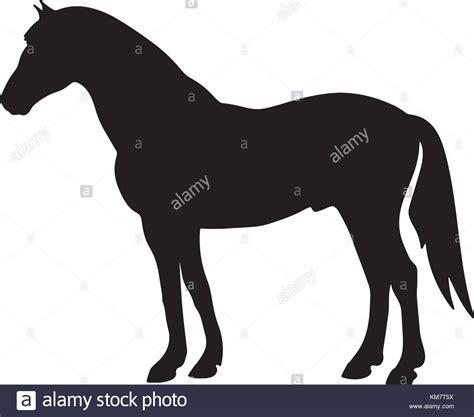 ferrari horse outline rearing up black horse stock photos rearing up black
