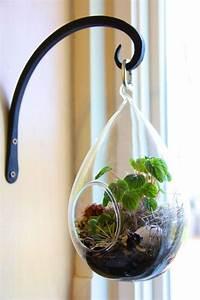 Bonsai Im Glas : le terrarium de printemps un morceau de nature la maison ~ Eleganceandgraceweddings.com Haus und Dekorationen