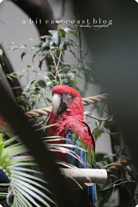 zoo pt coast bit east national