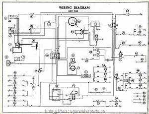 Rover 75 Electrical Wiring Diagram Practical 2002  Wiring
