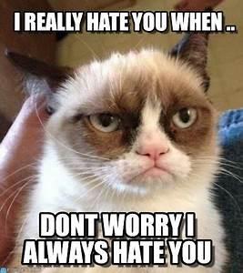 I Really Hate You When .. - Grumpy Cat Reverse meme on Memegen