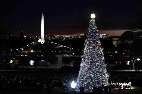 arboles de navidad del mundo vistazo