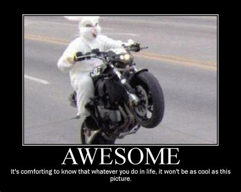 123 Best Images About Motorcycle Memes On Pinterest