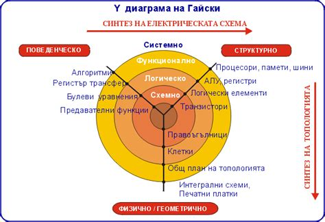 heirarchy diagram y chart