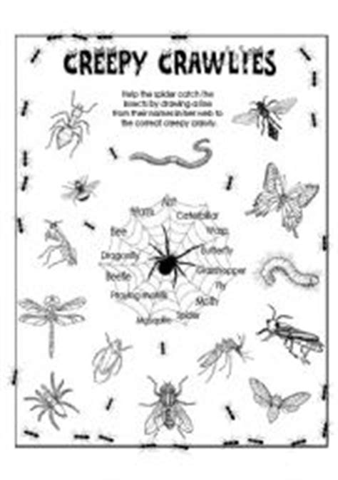 english worksheet creepy crawlies insects insects