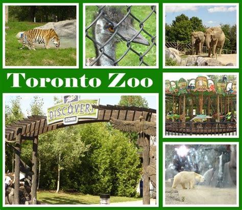 zoo toronto canada zoos ontario summer squidoo