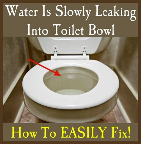 Water Is Slowly Leaking Into Toilet Bowl  How To Fix
