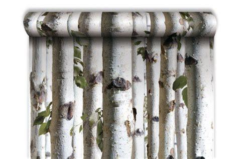 Tapisserie Foret by Papier Peint For 234 T De Bouleaux Papiers Peints Zen Pas Cher