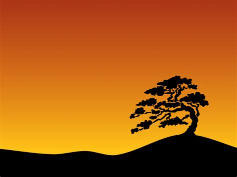 Slideshow Background Cool Tree Backgrounds Wallpaper Cave