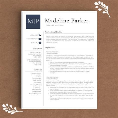 Resume Template Word It Professional by Professional Resume Template For Word Pages By