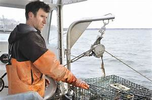 Hunting ghost traps: Casco Bay gets cleanup sweep ...