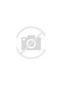 приказ о проведении внутреннего аудита перед аккредитацией по программам спо