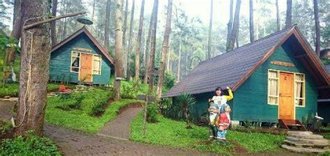 grafika cikole hotel camping lembang indonesia