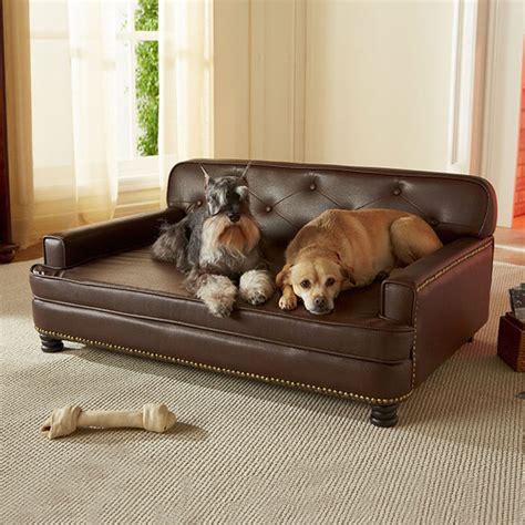canapé originaux 20 idées de cadeaux originaux pour chien 2tout2rien