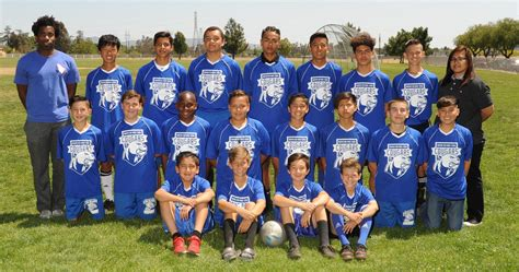 cougar athletics athletics mountain view middle school