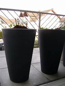 Pflanzkübel Für Rosen : terrassen und balkonbepflanzung ber diebst hle ~ A.2002-acura-tl-radio.info Haus und Dekorationen