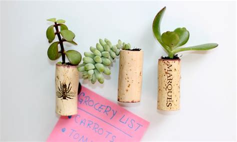 Cork Planters Kreative Bastelideen by How To Make Tiny Succulent Planter Magnets Mnn