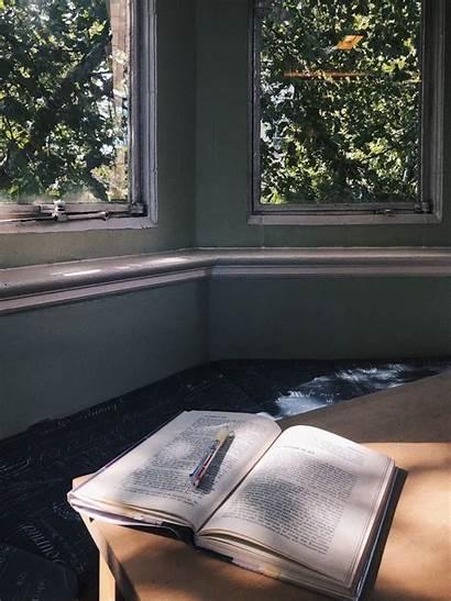 Reading College Aesthetics Aesthetic Nook Stella Adler