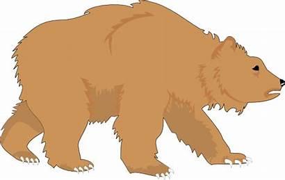 Bear Clip Clipart Brown Cartoon Furry Fluffy