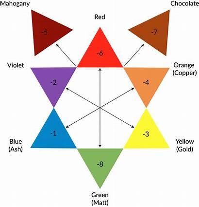 Colour Star Nxt Hair Chart