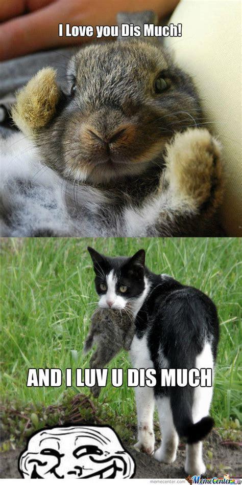 Bunny Memes - rmx loving bunny o 1242765 jpg 500 215 1000 fluffy bunny pinterest meme center funny memes