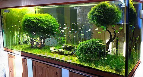 Aquascape Store by Aquascaping Things I Aquarium Fish Tank