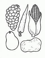 Coloring Cornucopia Printable Pages sketch template