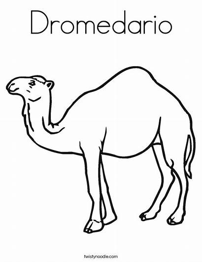 Camel Coloring Pages Brown Dromedario Sheets Outline