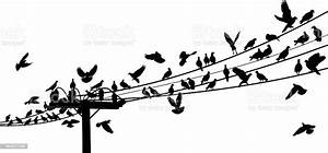 Drawing Of Birds On Telephone Wire Stock Illustration
