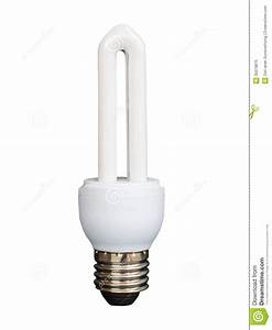 Light Bulb Isolated On White Background Royalty Free Stock ...