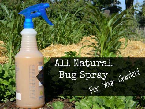 garden bug spray all insect spray for your garden