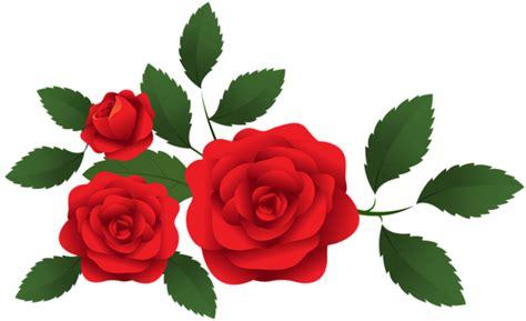 bunga rose png