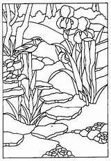 Glasmalerei Vitrail Zeichenkunst Vitraux Vidrio Malbilder Buntglasfenster Patrons Buch Glaskunst Schablonen Jugendstil Idées Waterfalls Spiderman Modele Freepatternsforstainedglass sketch template