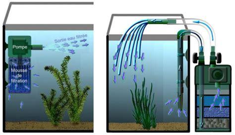 aquagrom les principaux composants d un aquarium d eau douce