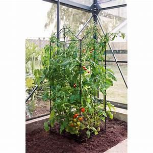 Treillis Pour Plantes Grimpantes : support treillis et tuteur plante grimpante jardin et ~ Premium-room.com Idées de Décoration
