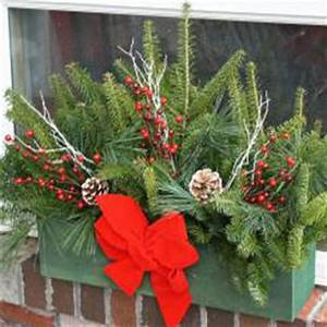 Dressing your planters and window boxes for the holidays