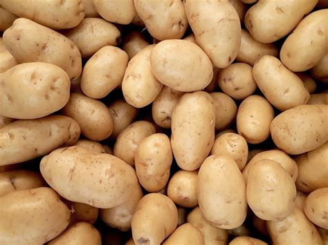 Plentiful Potatoes: How to best store and use those ...