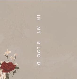 In My Testo by Shawn Mendes Audio Testo E Traduzione Di In My Blood