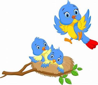 Nest Vogel Freepik Premium Bird Comic Due