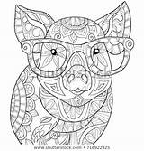 Coloring Adult Pages Mandala Royalty Shutterstock Adults Printable Animal Pig Colouring Books sketch template