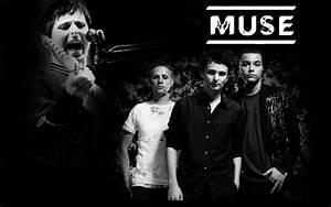 Muse - Madness Lyrics | MissingLyrics