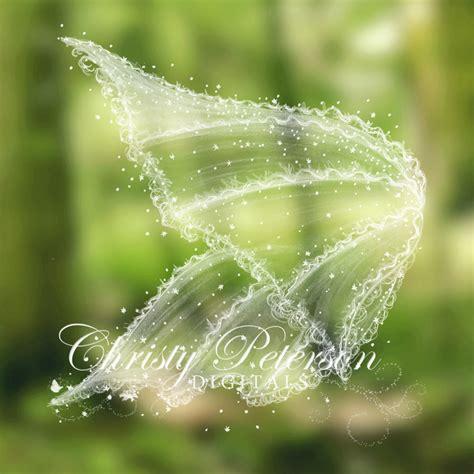 fairy wing photoshop brushes  overlays set  christy