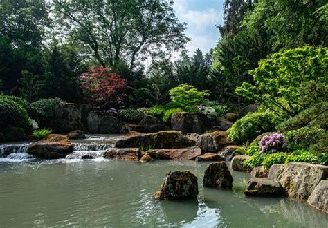 Botanischer Garten Augsburg Japan by Blumenpracht Picture Of Botanischer Garten Japan