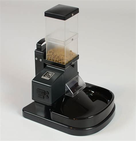 automatic cat feeder best automatic cat feeder reviews and buying guide