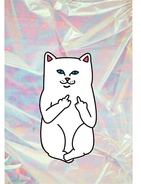 Aesthetic High Resolution Aesthetic Cat Wallpaper Iphone ripndip cat with hologramy background ripndip wallpaper