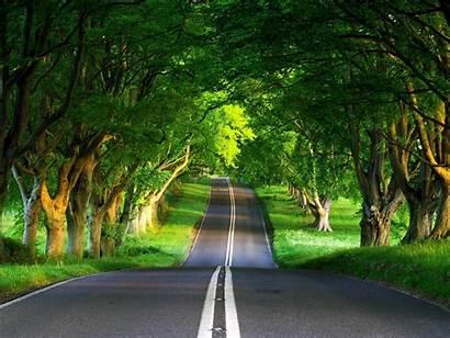Nature Road Landscape Between Wallpapers