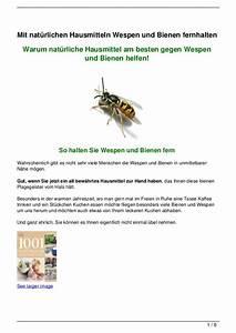 Bienen Und Wespen : mit nat rlichen hausmitteln wespen und bienen fernhalten ~ Whattoseeinmadrid.com Haus und Dekorationen