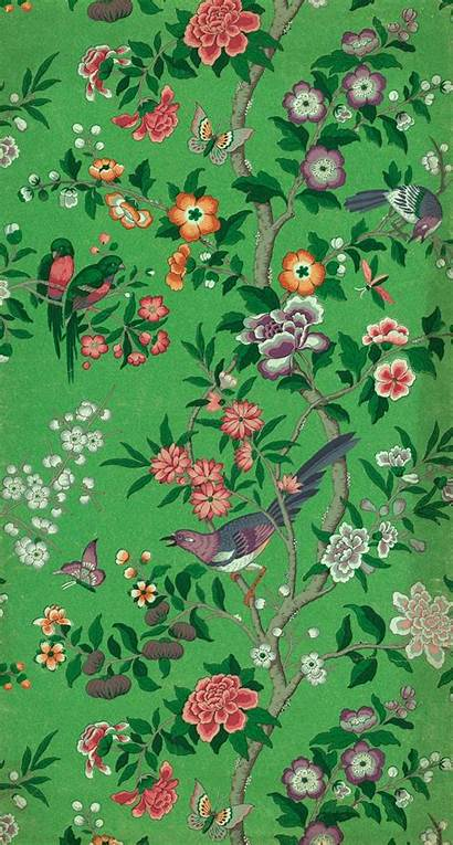 Chinese Magpie Dragon Backgrounds Exclusive Flower Vam