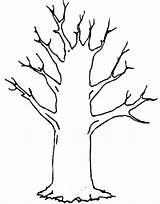 Tree Trunk Coloring Clipart Winter Trees Leaves Colouring Pages Drawing Template Clip Bare Dead Silhouette Printable Cliparts Knowledge Drawings Getdrawings sketch template